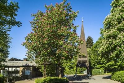Gottesdienst in dem Ev.-luth. Johannis-Kirchzentrum Rinteln