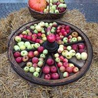 Rintelner Apfelmarkt
